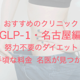GLP-1・名古屋編 おすすめのクリニック 努力不要のダイエット 手頃な料金 名医が見つかる